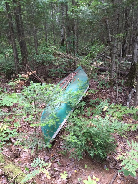 lonesome, dejected&rejected canoe, rat lake